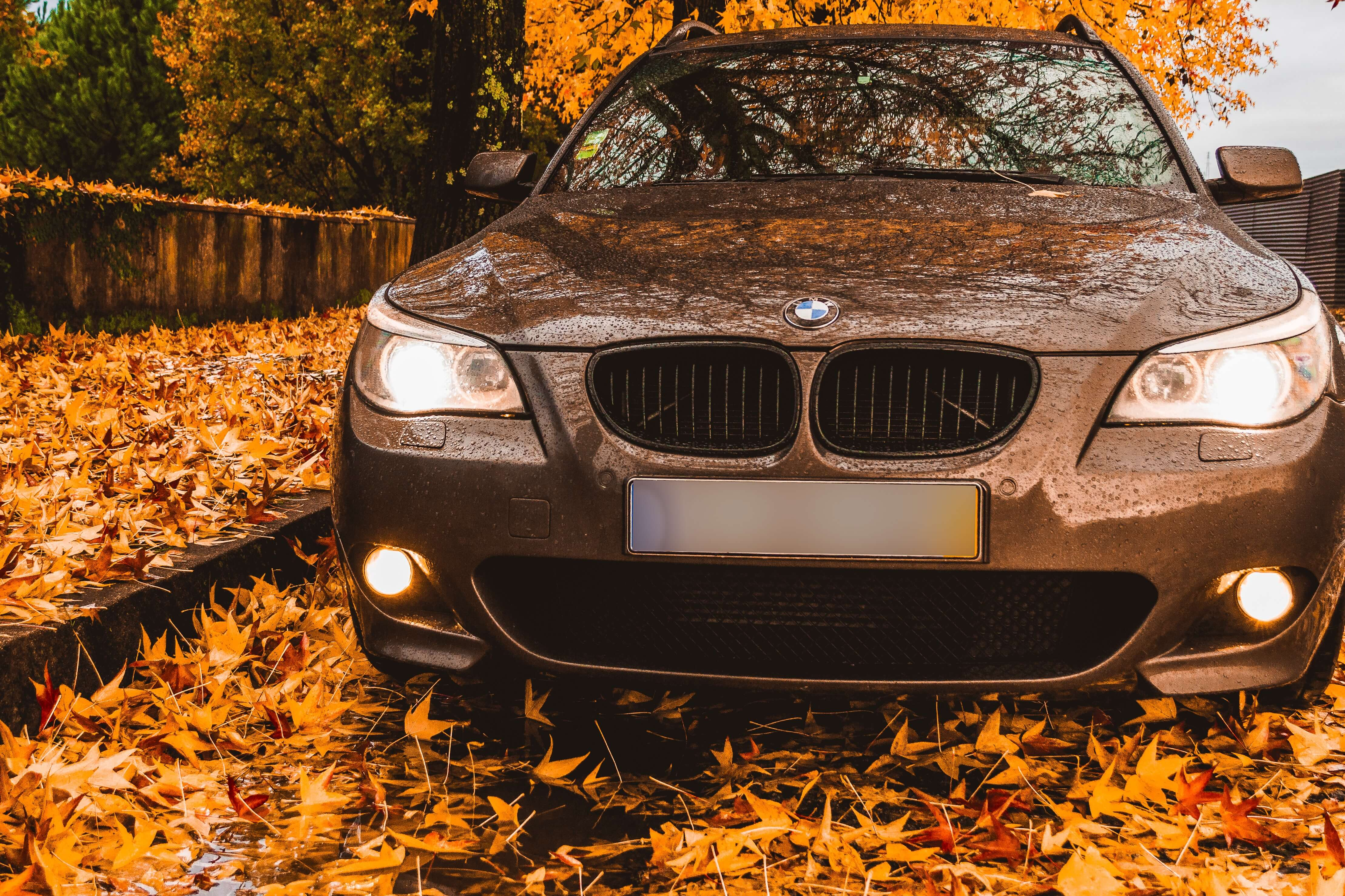 Extravagant Autumn Exteriors: Car Colors for the Fall landscape
