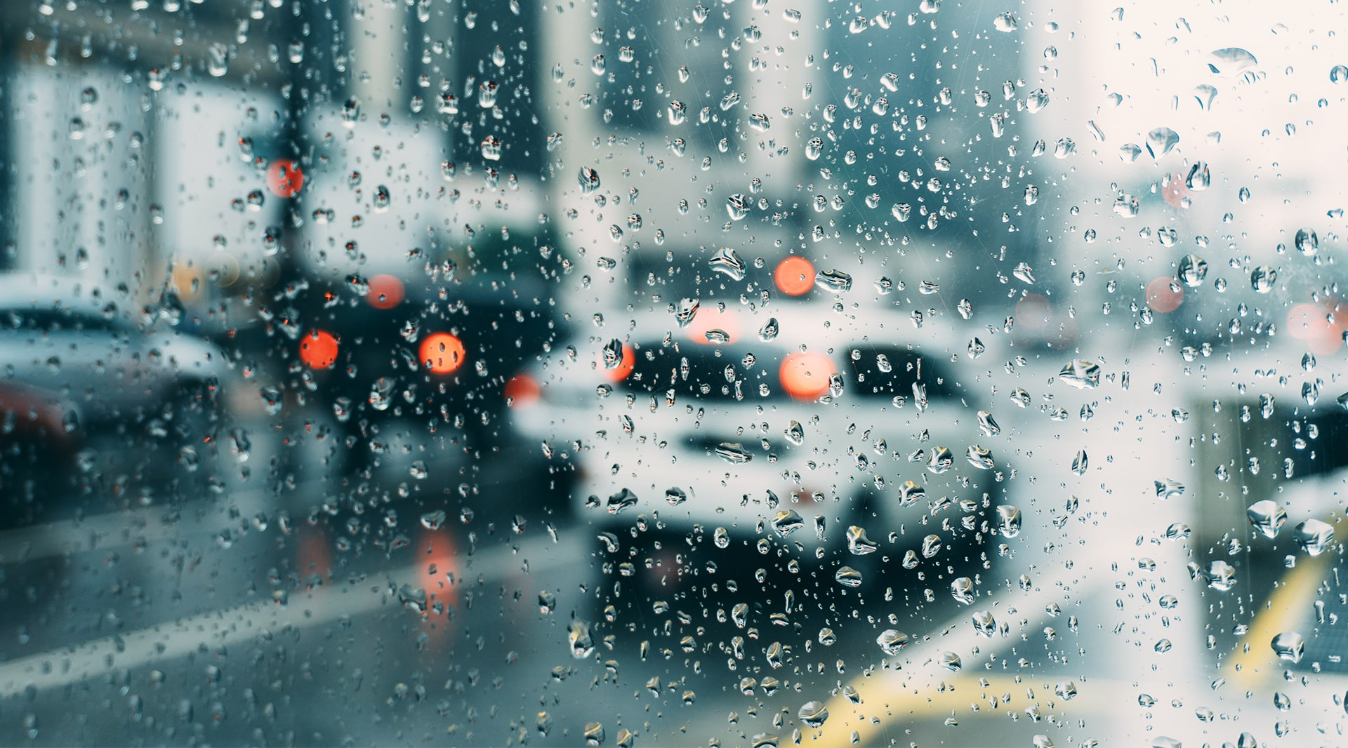 April Showers Bring May Flowers … and Road Hazards: Tips for Safe Driving on Wet Roads landscape